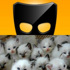 Great Wall of Grindr: Getting Catty
