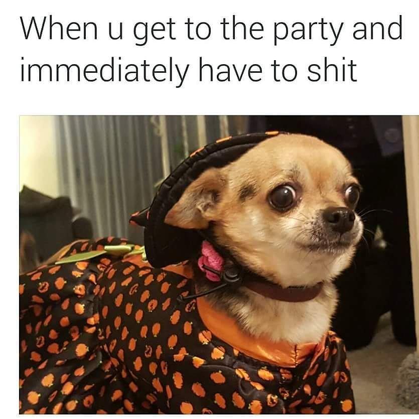 meme-shit